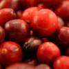 Cranberries – a great detox fruit